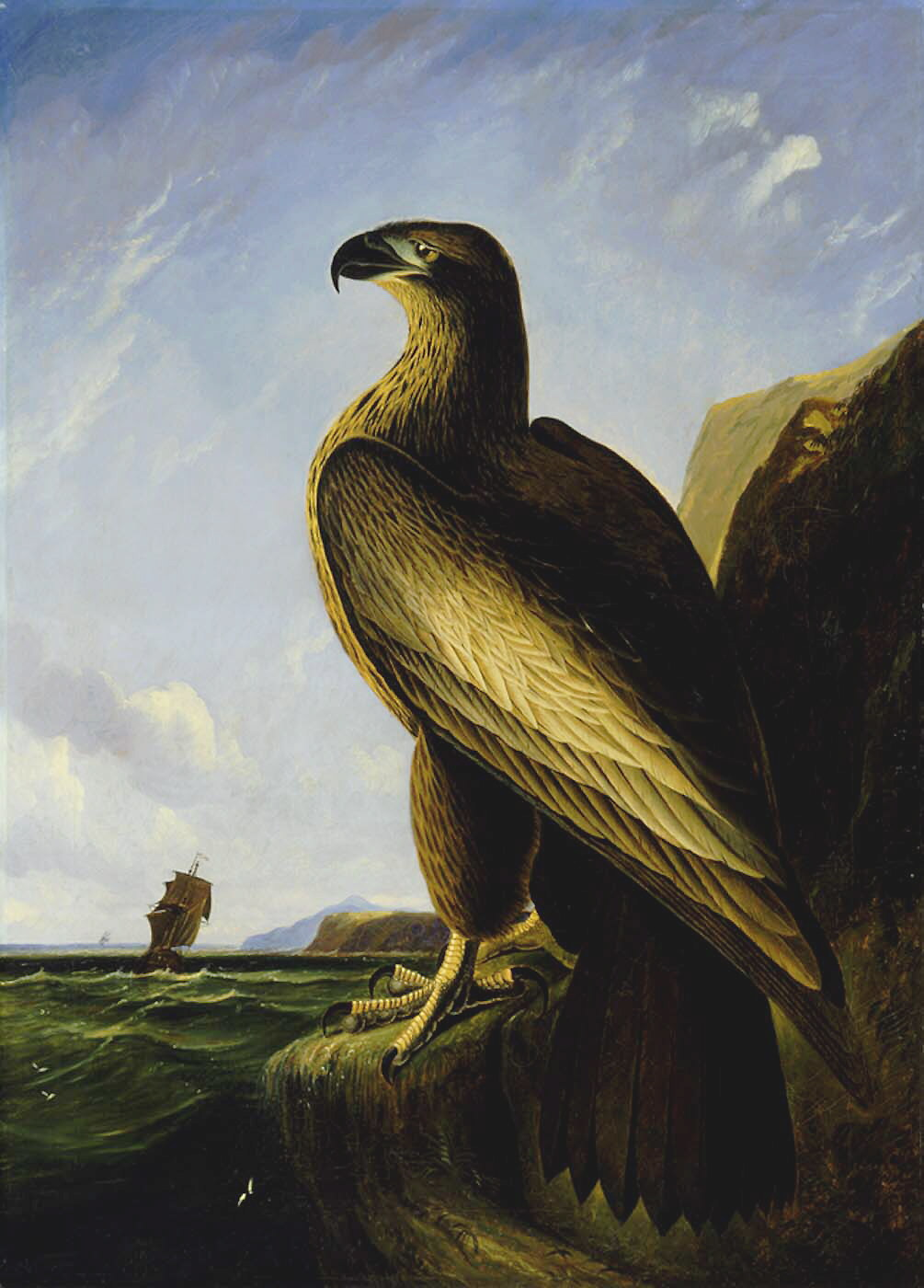 Washington's eagle
